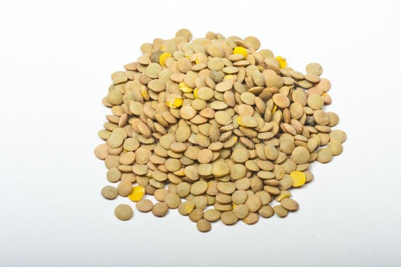 Lentil. Pile of lentil isolated on white stock image