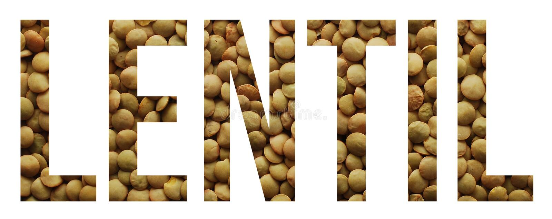 Lentil. Seeds text banner sample stock images