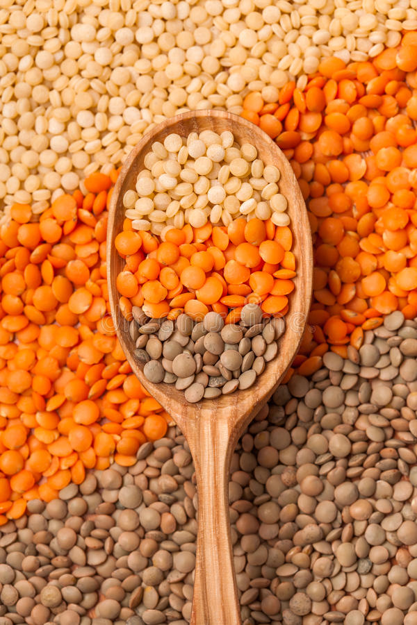 Lentil mix. In a wooden spoon royalty free stock image