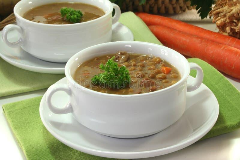 Lentil stew royalty free stock photo
