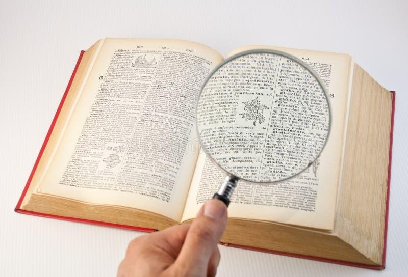 Lentille et livre 1 de loupe photographie stock libre de droits