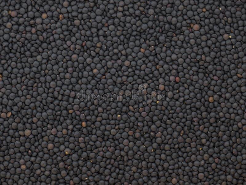 Lentilles noires sèches de beluga images libres de droits