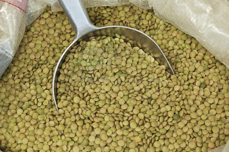 54,768 Lentils Photos - Free & Royalty-Free Stock Photos from Dreamstime