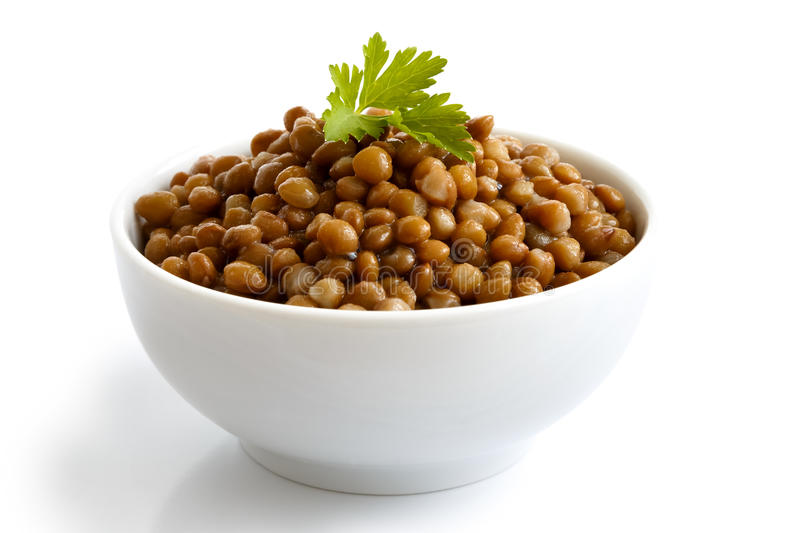 Lentils. White ceramic bowl of brown cooked lentils with parsley isolated on white in perspective stock photos
