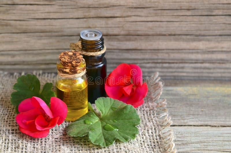 ?leo essencial do ger?nio em uma garrafa de vidro com flores e folhas da planta dos ger?nio na tabela de madeira imagens de stock royalty free