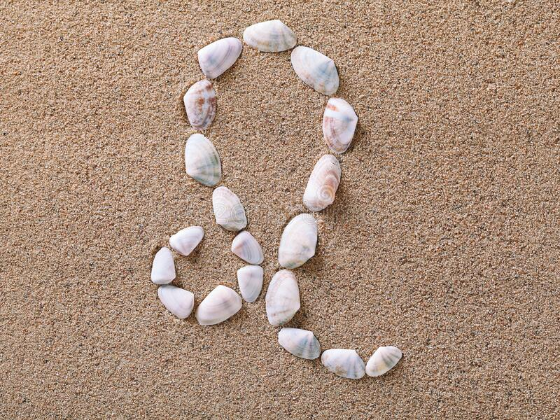 Leo Zodiac sign made of seashells. On sand background royalty free stock photo