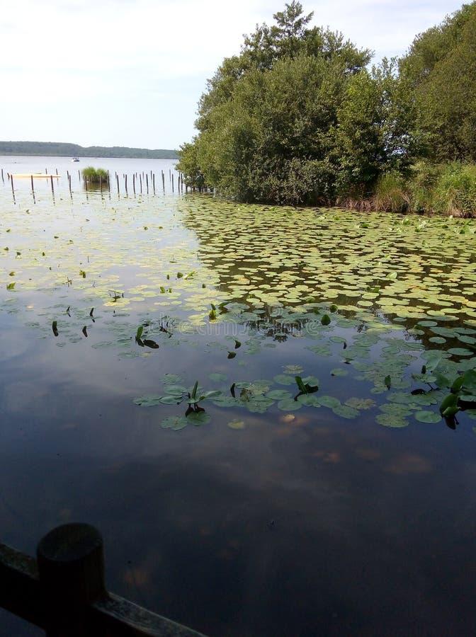 Leon-sjön fotografering för bildbyråer