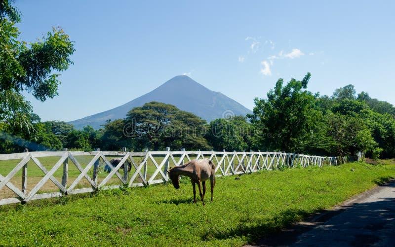 Leon Viejo szenisches Nicaragua lizenzfreies stockbild