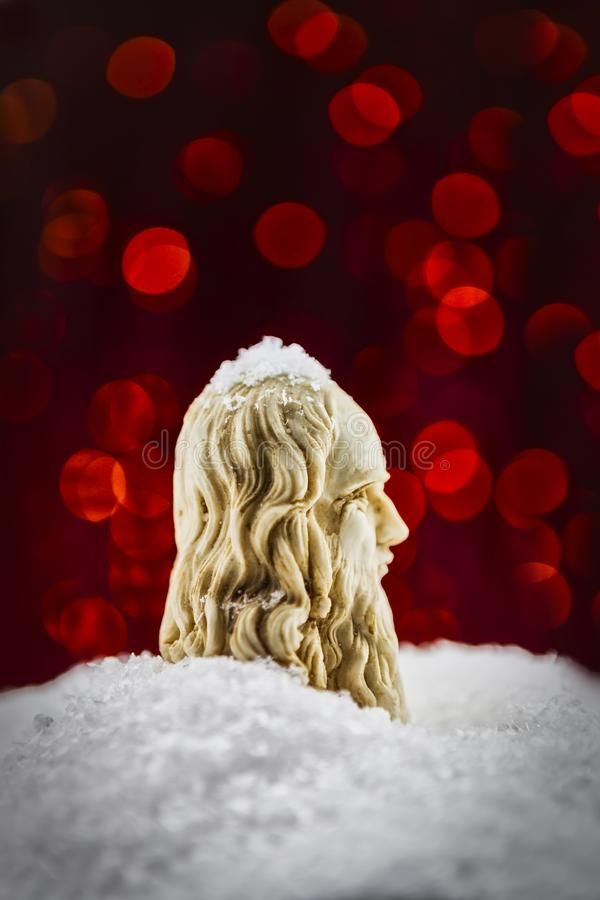 Leonardo da Vinci-profiel in de sneeuw royalty-vrije stock afbeelding