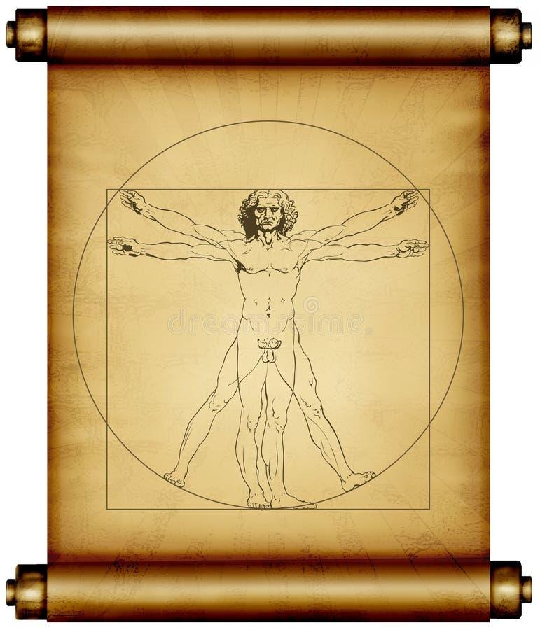 Leonardo Da Vinci Vitruvian   ilustração do vetor