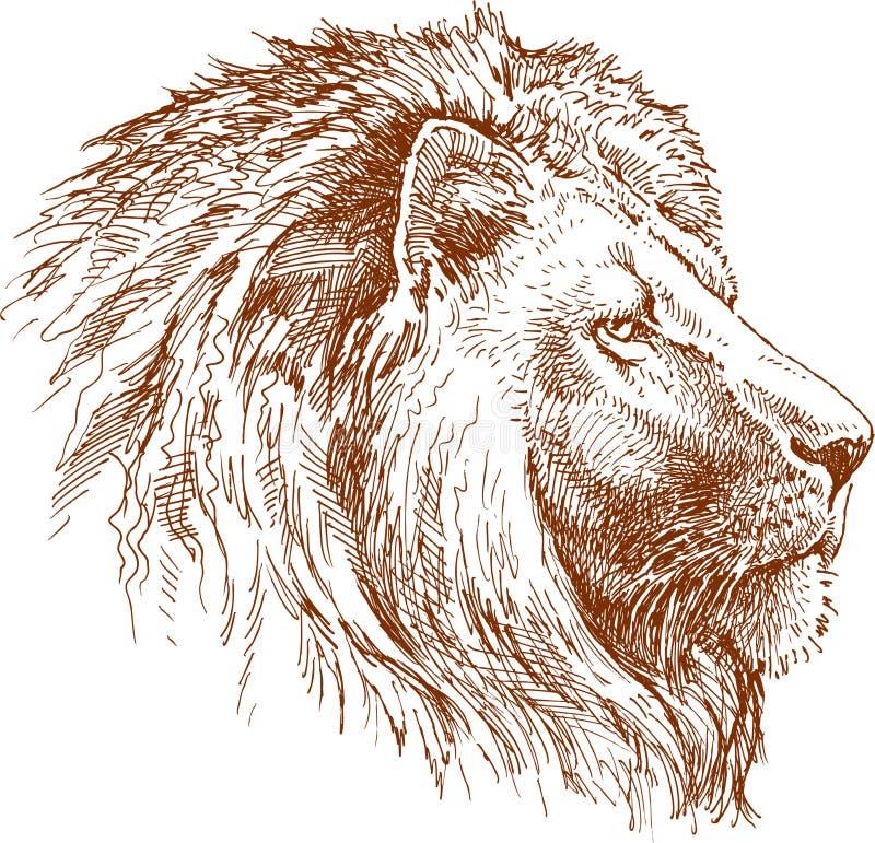 Leone illustrazione vettoriale