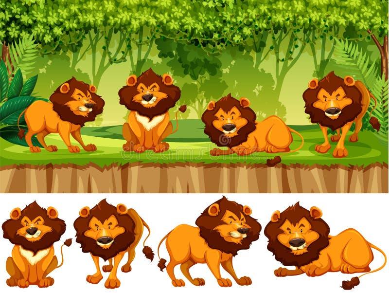 Leone nel selvaggio royalty illustrazione gratis