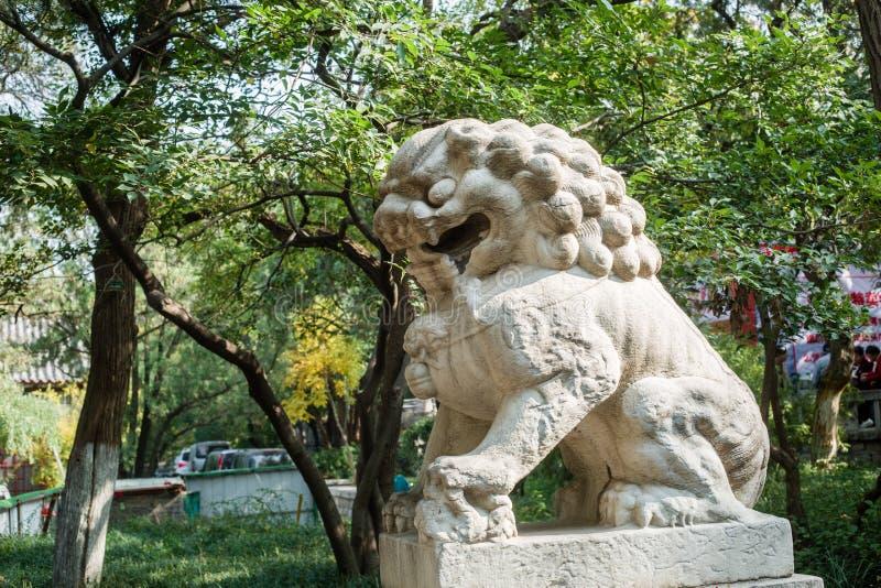 Leones de la piedra de China imagen de archivo libre de regalías