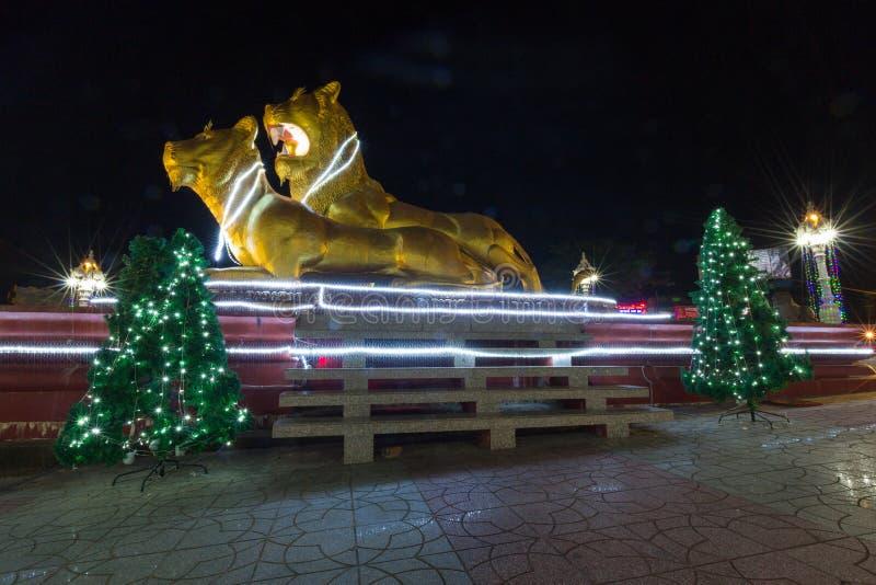 Leones de oro iluminados en la noche, centro de Sihanoukville Camb fotos de archivo