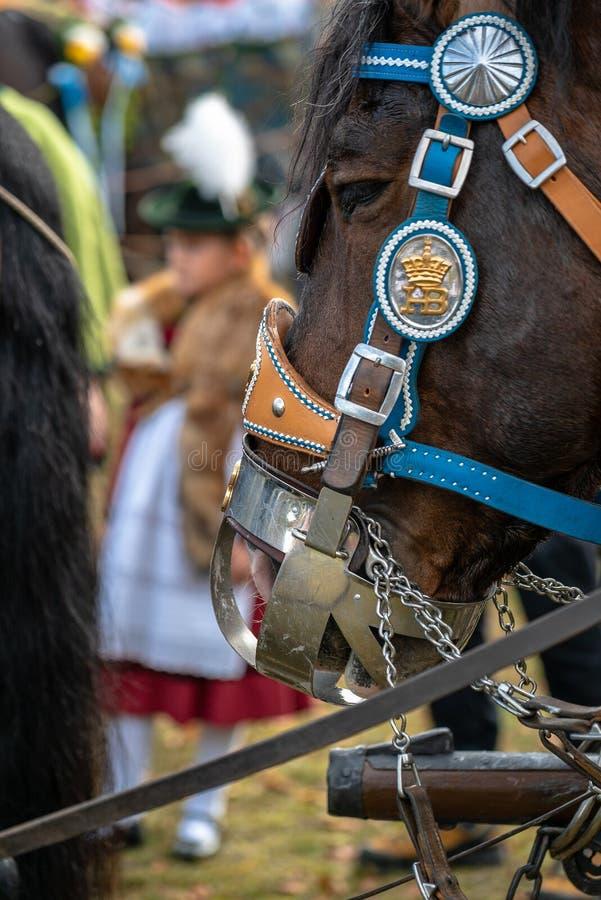 Free Leonhardi Decorated Big Cold Blooded Horses Bad Toelz Germany Royalty Free Stock Image - 133591426