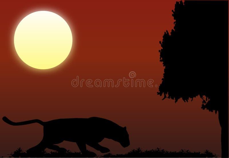 leopard κυνηγιού νύχτα απεικόνιση αποθεμάτων