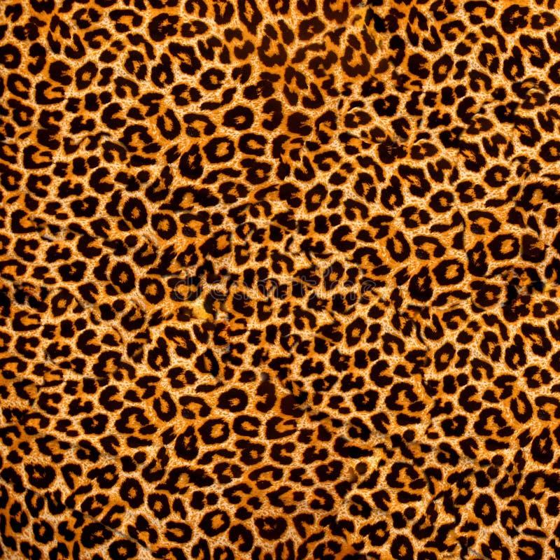 Leopard ύφασμα στοκ φωτογραφία