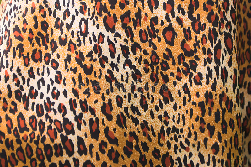 Leopard. Nice versatile leopard print background royalty free stock photo