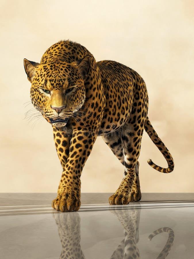 leopard lizenzfreie abbildung