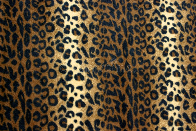Leopard. A brown leopard print pattern royalty free stock photos