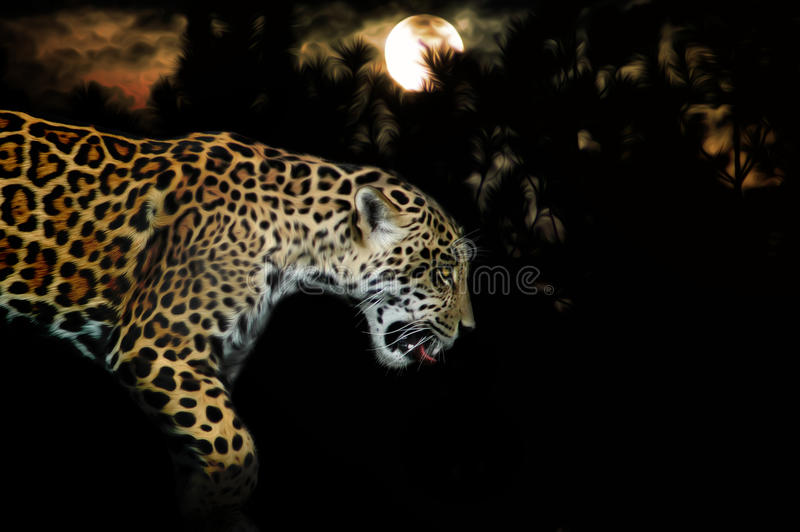 Leopard. A leopard in the dark under a full moon with dark tree silhouettes. Concept for the hunt of this large carnivore stock photo