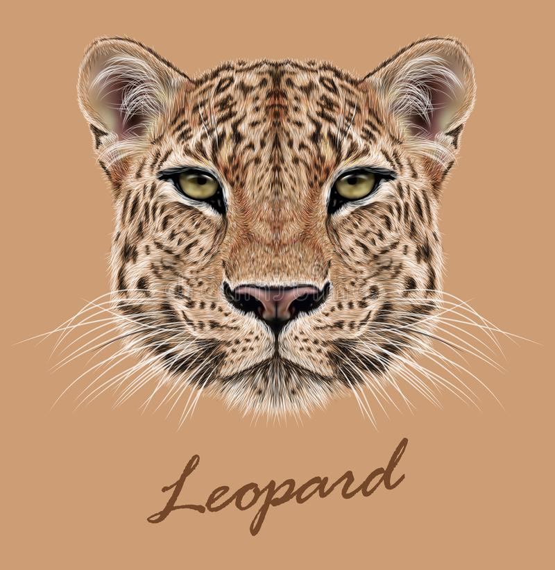 Free Leopard Animal Face. Vector African, Asian Wild Cat Head Portrait. Realistic Fur Portrait Of Exotic Leopard Isolated On Beige Stock Photo - 142399540