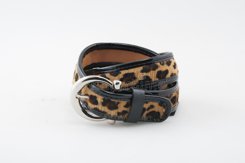 Leopard belt. Woman leopard printed belt. Isolated on white stock image