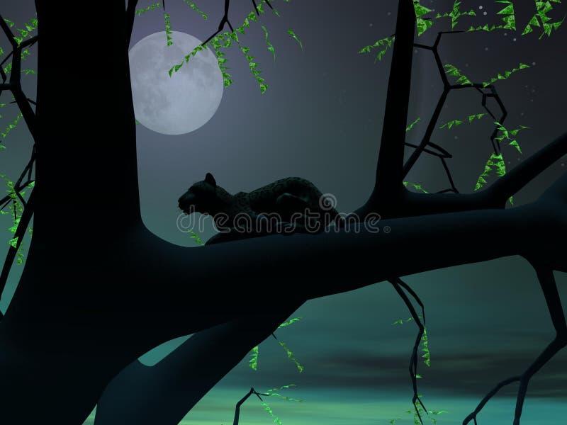 Leopard bis zum grüner Nacht lizenzfreie abbildung