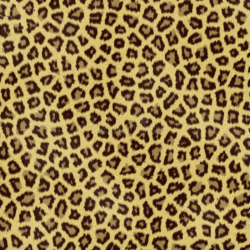 Download Leopard fur stock illustration. Image of jungle, leather - 9238072