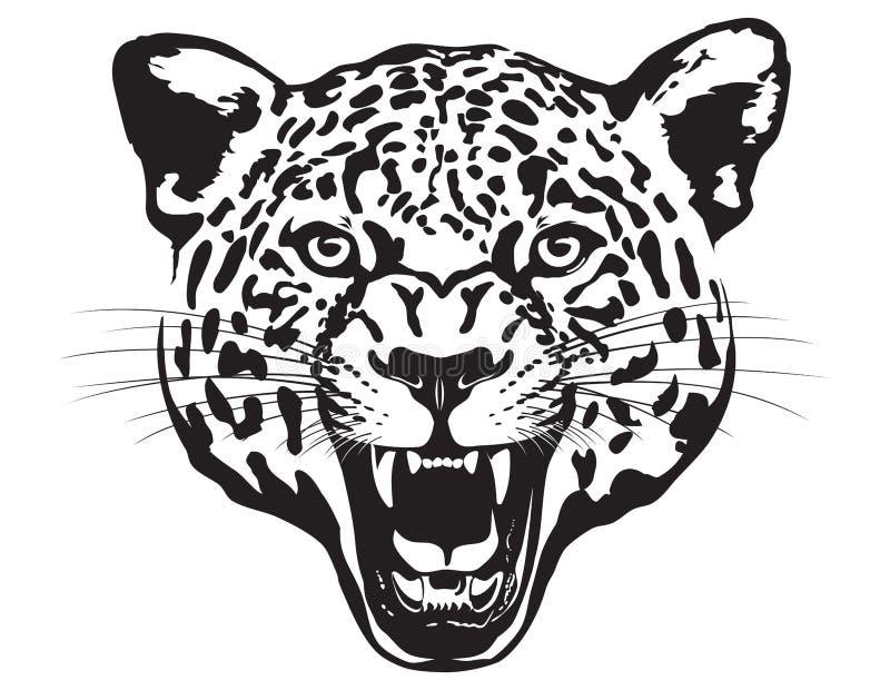 Leopard Head. Illustration. stock photography