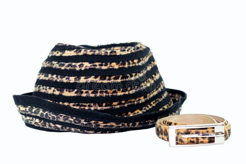 Leopard-Hut und Gurt stockfotos