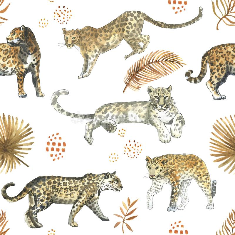 Leopard,jaguar cat animal seamless pattern with tropical golden leaves stock images