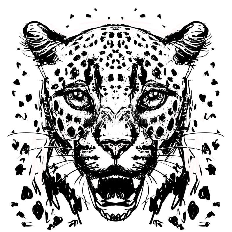leopard; jaguar; head; cat; face stock illustration