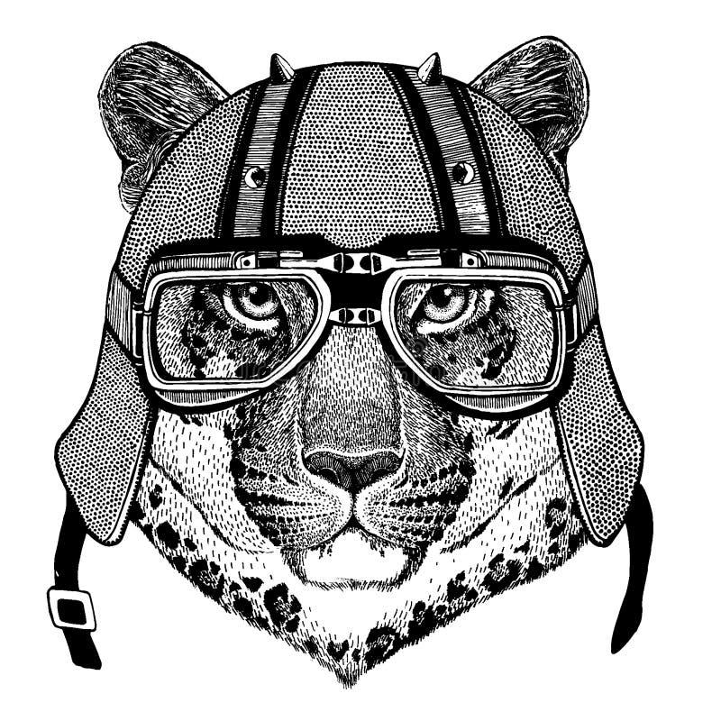 Leopard jaguar, lös katt, panter som bär en motorcykel, aero hjälm Utdragen bild för hand för tatueringen, t-skjorta, emblem stock illustrationer