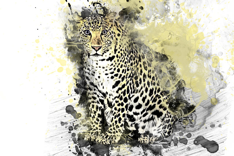 Leopard, Jaguar, predator painted colors royalty free illustration