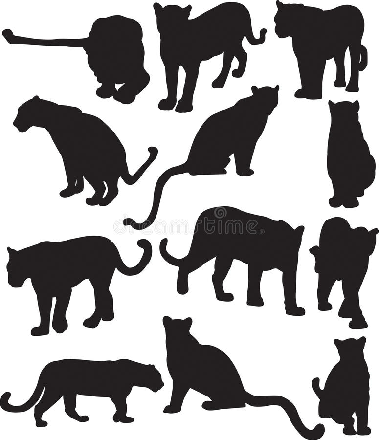 Leopard or panther silhouette contour vector illustration