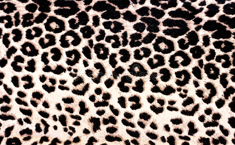 Leopard Pattern. Large leopard pattern / skin / print background stock photo
