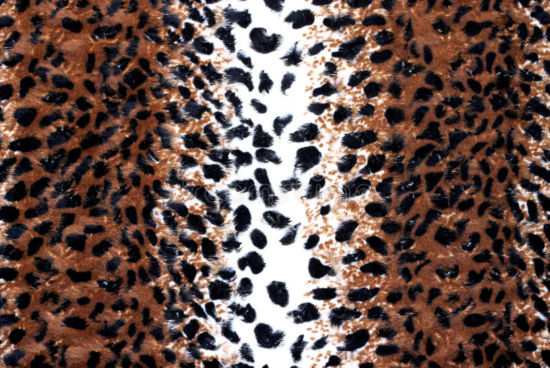 Leopard Pattern. Large leopard pattern / skin / print background stock photos