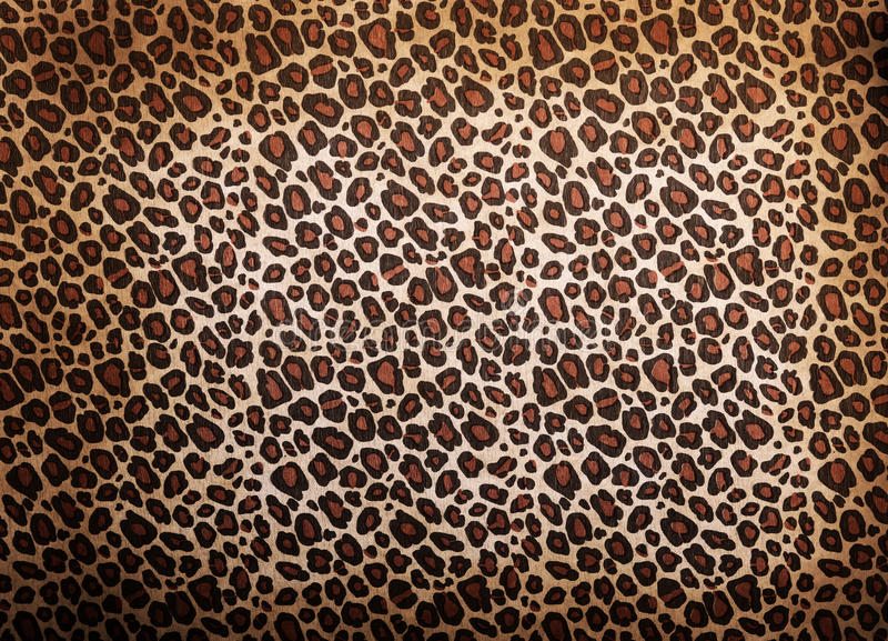 Leopard pattern. Background or texture close up royalty free stock images