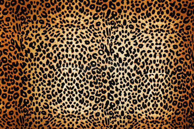 Leopard pattern. Wild animal pattern background or texture close up - material stock photos