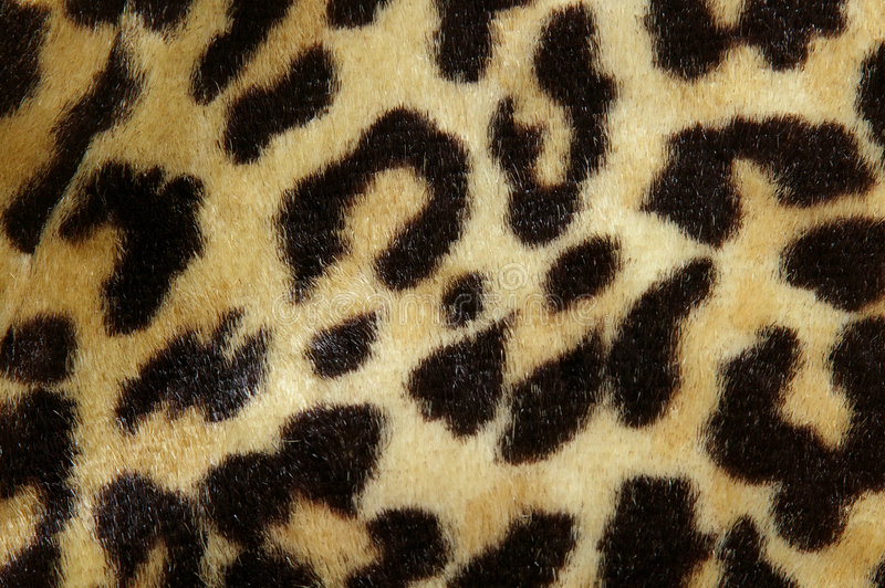 Download Leopard print stock image. Image of shopping, soft, accessory - 1251429