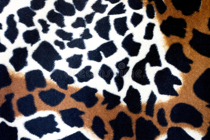 Leopard Print. Black, cream and brown colored leopard texture royalty free stock photography