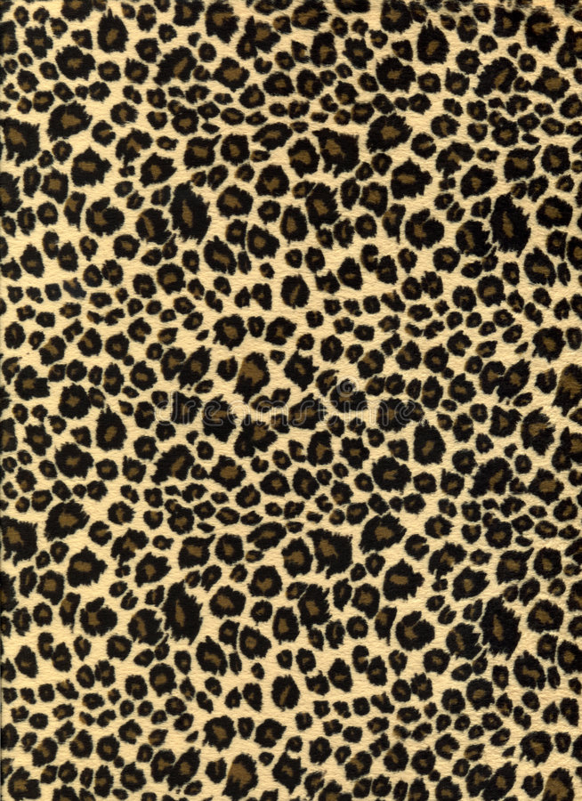 Leopard print fabric texture stock photo