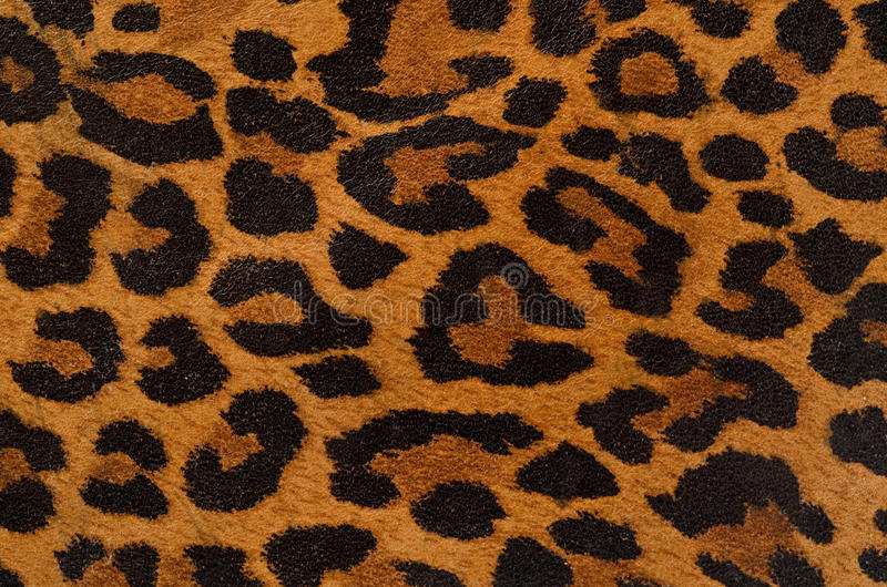 Download Leopard print pattern stock image. Image of leopard, material - 24122401
