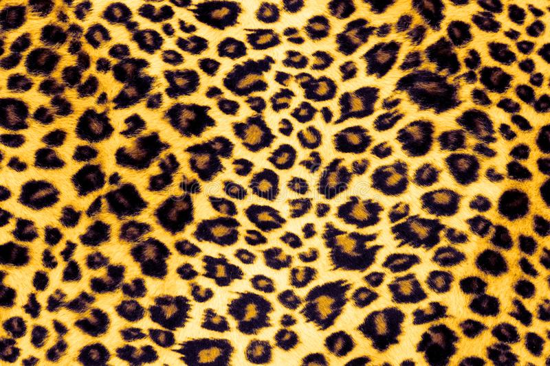 Leopard Print royalty free stock image