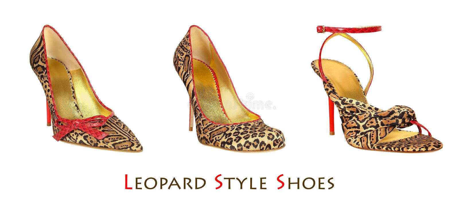 Leopard print shoes. Group of tree leopard print woman shoes stock images