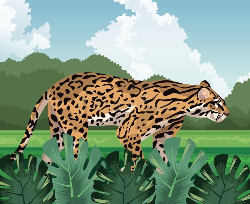 Leopard promenad, tropisk fauna och flora royaltyfri illustrationer