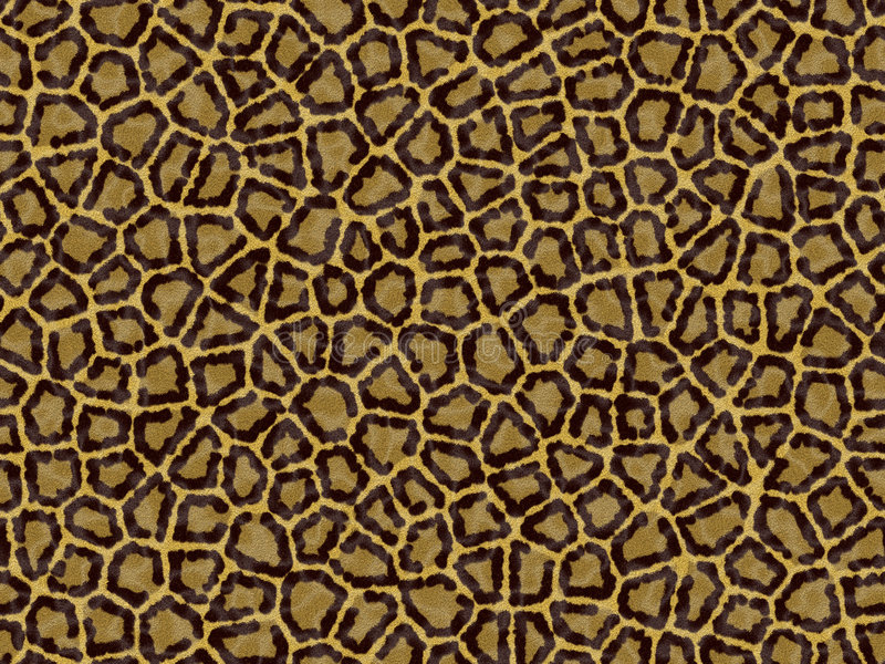 Leopard skin stock photography