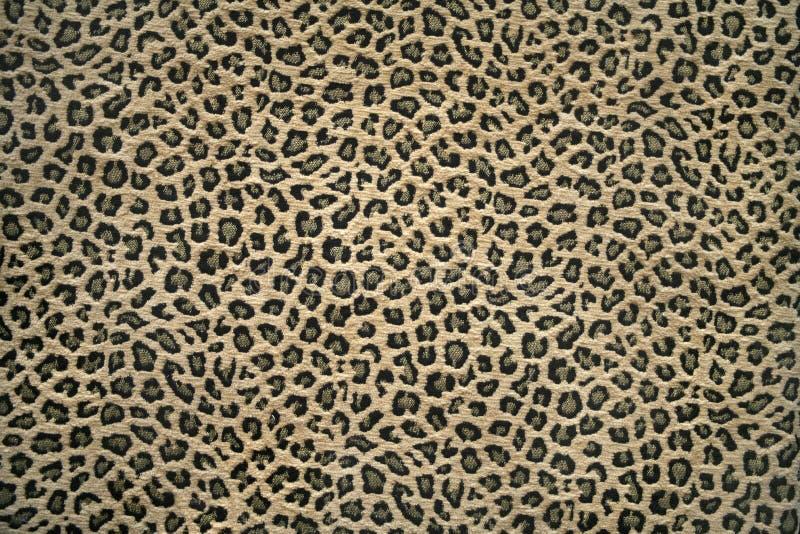 Leopard skin pattern royalty free stock photos
