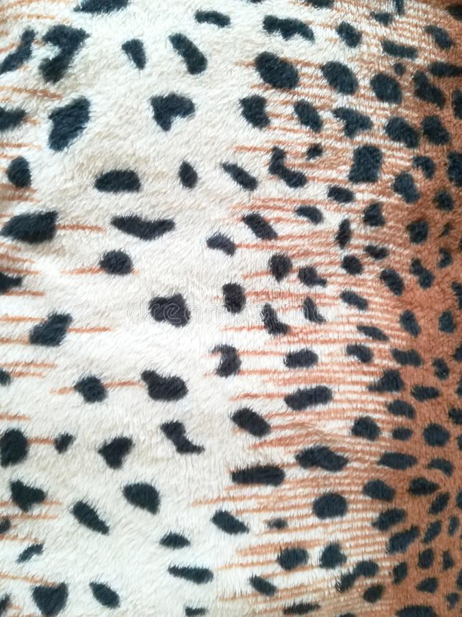 leopard skin pattern closeup background animal fur royalty free stock photo